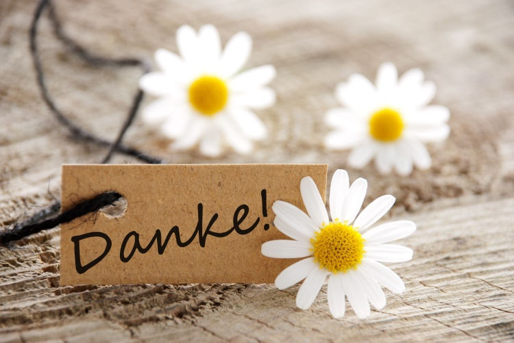 a natural looking banner with the german word Danke, which means thanks and white blossoms as background
